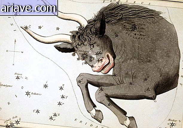 Representation of the sign Taurus